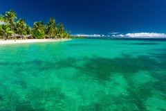 Tropisch eiland in Fiji met strand en water met koraal Royalty-vrije Stock Fotografie