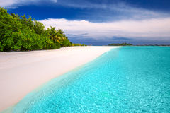 Tropisch eiland met zandige strand en palmen Stock Foto
