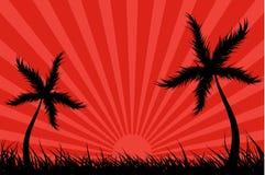 Tropisch eiland met zonuitbarsting Royalty-vrije Stock Fotografie