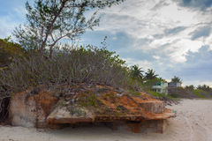 Tropisch Eiland reis Varadero stock foto's