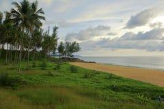 Tropisch eiland van kokospalmen en weide Stock Afbeelding