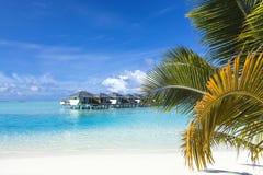 Tropisch eilandstrand Stock Afbeelding