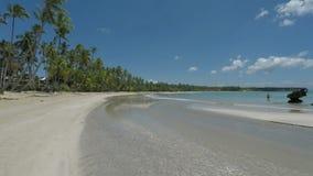 Tropisch en natuurlijk Caraïbisch strand dichtbij samana stock videobeelden