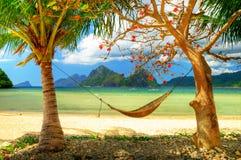 Tropisch entspannen Sie sich stockbild