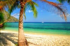 Tropisch entspannen Sie sich stockfoto