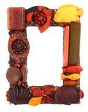 Tropisch frame Royalty-vrije Stock Fotografie