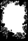 Tropisch frame Royalty-vrije Stock Afbeeldingen