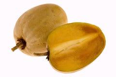 Tropisch fruit - Chiku stock afbeelding