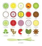 Tropisch Fruit en Tropisch Herb Icon Stock Afbeeldingen