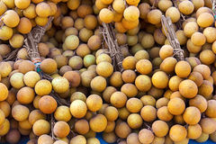 Tropisch fruit: Longan Royalty-vrije Stock Foto