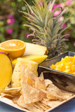 Tropisch Fruit Salsa Royalty-vrije Stock Afbeeldingen