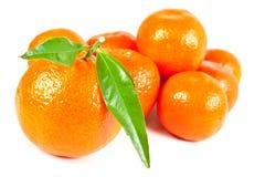 Tropisch fruit. Verse mandarijn. Stock Afbeelding