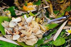 Tropisch gediend voedsel openlucht in Aitutaki-Lagune Cook Islands royalty-vrije stock foto
