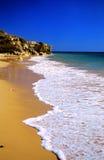 Tropisch gouden strand royalty-vrije stock afbeelding