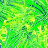 Tropisch Groen naadloos patroon royalty-vrije illustratie