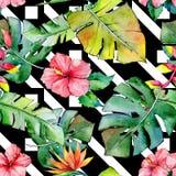 Tropisch Hawaï verlaat patroon in een waterverfstijl royalty-vrije illustratie