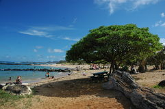 Tropisch Hawaiiaans Strand - Kauai Royalty-vrije Stock Afbeeldingen