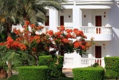 Tropisch hotel Royalty-vrije Stock Foto