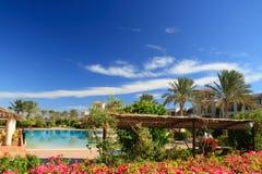Tropisch hotel. De lente. Royalty-vrije Stock Foto's