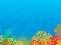 Tropisch koraalrif royalty-vrije illustratie