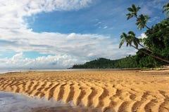 Tropisch landschap Stock Foto