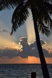 Tropisch landschap (de Maldiven) Royalty-vrije Stock Afbeelding