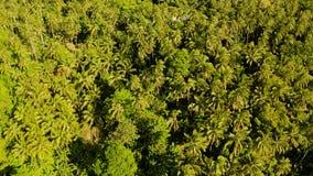 Tropisch landschap met regenwoud Camiguin, Filippijnen stock footage