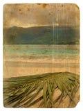 Tropisch landschap. Oude prentbriefkaar. Royalty-vrije Stock Fotografie