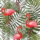 Tropisch modern naadloos patroon met roze flamingo's en palmbladen op meetkunde stock illustratie