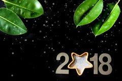 Tropisch Nieuwjaar 2018, bladeren van de ficus op een zwarte achtergrond Royalty-vrije Stock Foto