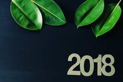 Tropisch Nieuwjaar 2018, groene bladeren van de ficus op een zwarte achtergrond Royalty-vrije Stock Foto's