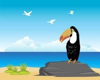 Tropisch oceanside en strand Royalty-vrije Stock Foto