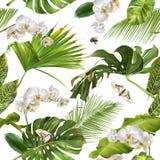 Tropisch orchidee wit patroon Royalty-vrije Stock Foto's