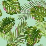 Tropisch palmbladen naadloos patroon Waterverf bloemenachtergrond Exotisch Botanisch Ontwerp voor Stof, Textiel stock illustratie