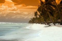 Tropisch Paradijs Royalty-vrije Stock Foto's