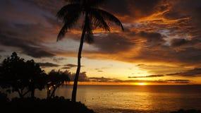 Tropisch paradijs bij zonsondergang Royalty-vrije Stock Afbeeldingen