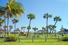 Tropisch Park Royalty-vrije Stock Afbeelding