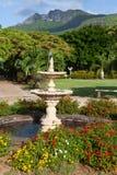 Tropisch park bij de bodem van bergen in een zonnige dag royalty-vrije stock foto