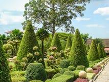 Tropisch park Het ontwerp van het landschap Royalty-vrije Stock Afbeeldingen