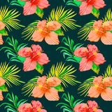 Tropisch patroon Hibiscus, monsterablad, palmbladen Stock Fotografie