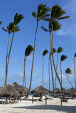 Tropisch Strand Royalty-vrije Stock Afbeeldingen