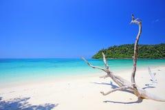 Tropisch strand, Andaman-Overzeese koh Rok Royalty-vrije Stock Foto's