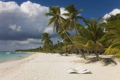 Tropisch strand bij onweer Stock Foto's