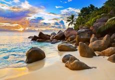 Tropisch strand bij zonsondergang royalty-vrije stock afbeelding