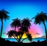 Tropisch strand bij zonsondergang royalty-vrije illustratie