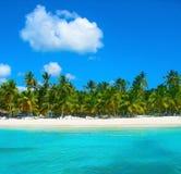 Tropisch strand in Caraïbische overzees, Saona-eiland, Dominicaanse Republiek Royalty-vrije Stock Afbeelding