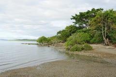 Tropisch strand, Costa Rica stock fotografie