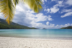 Tropisch strand in de Caraïben Stock Foto