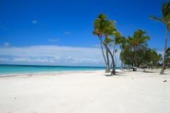 Tropisch Strand in de Dominicaanse Republiek van GLB Cana Royalty-vrije Stock Afbeeldingen