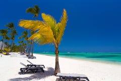 Tropisch strand dichtbij toeristentoevlucht Stock Fotografie